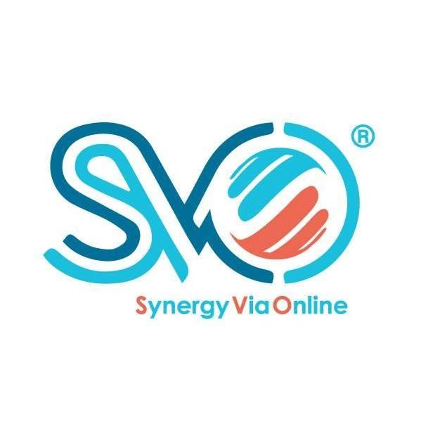 jobs in SVO (Synergy Via Online)