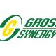 jobs in Gross Synergy Sdn Bhd
