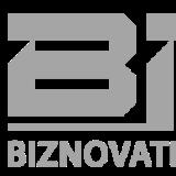 jobs in Biznovative Solutions