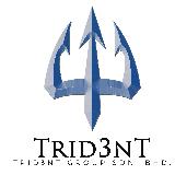 jobs in Trid3nt Group Sdn Bhd