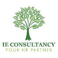 jobs in IE Consultancy